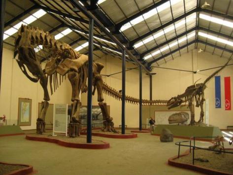 argentinosaur-skelly-for-sv-pow.jpg