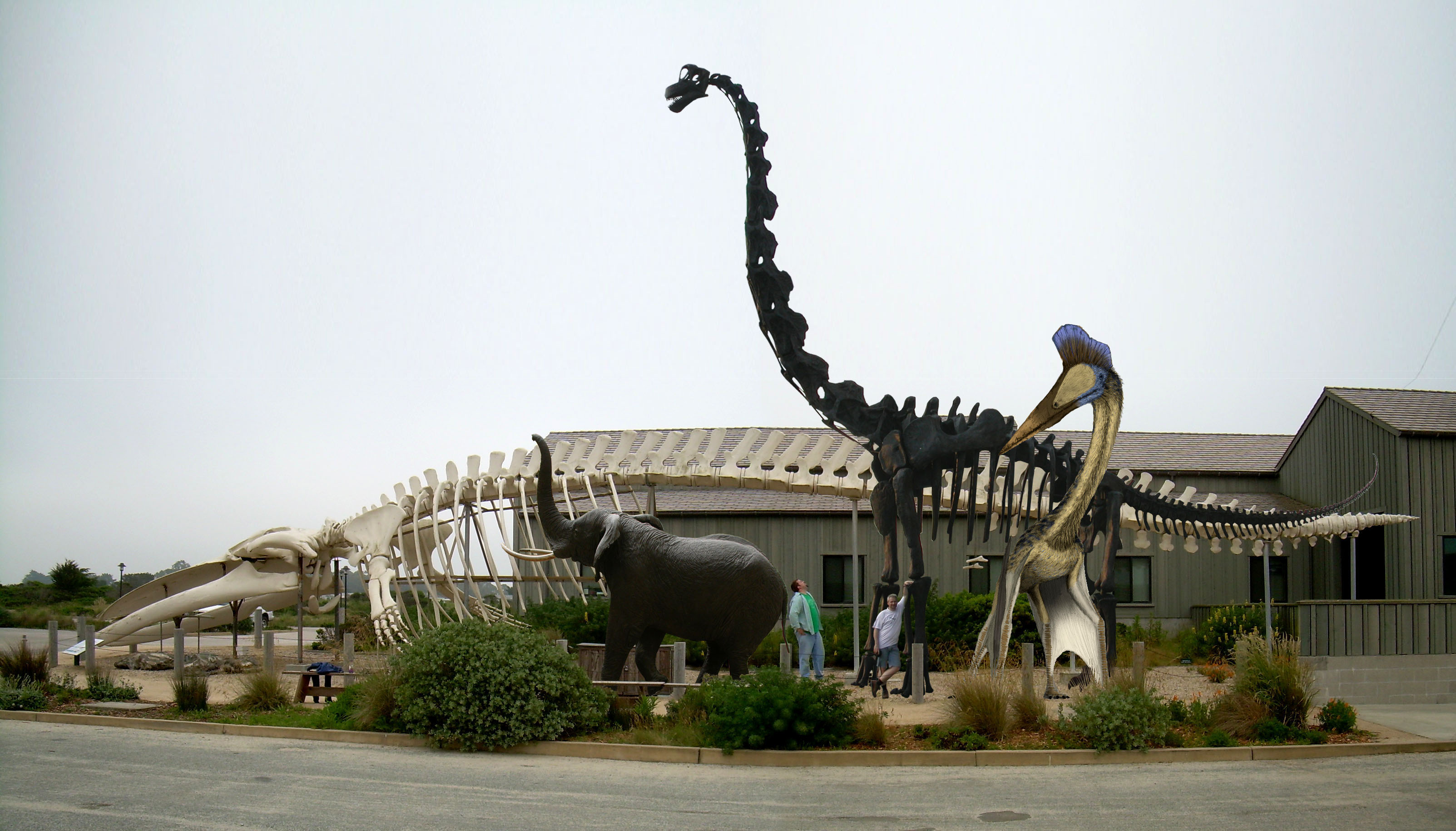 http://svpow.files.wordpress.com/2008/06/blue-whale-and-brachiosaurus-and-hatzegopteryx.jpg
