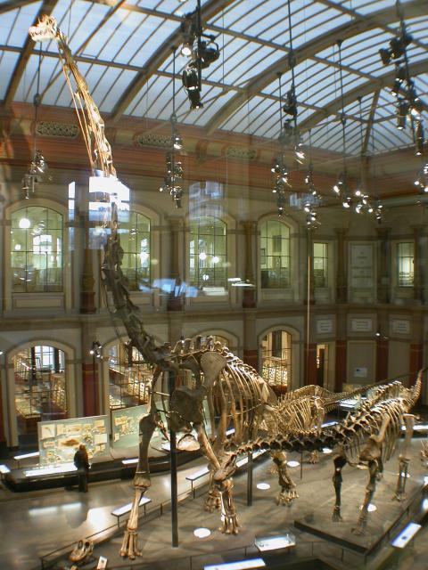 humboldt-exhibit-480px