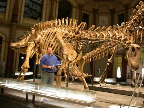 Dicraeosaurus mount, Humboldt Museum. Anterolateral view