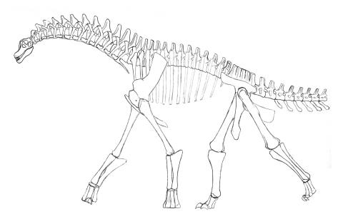 isisaurus-colberti-circa-2000-480