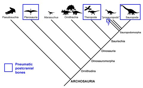 What's going on here? Why are ornithischians so lame?