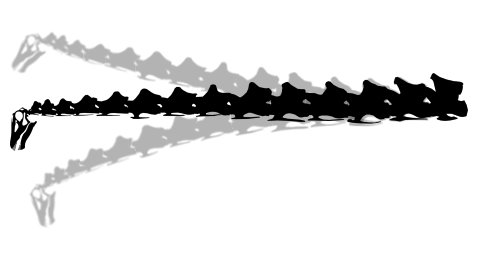 Diplodocus 4 degree range