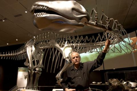 Physical DinoMorph model at the AMNH, with horizontal-neck advocate Kent Stevens.  Photograph by Rick Edwards, AMNH