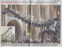 The Telegraph; and, no, there really wasn't any other text besides the image caption.