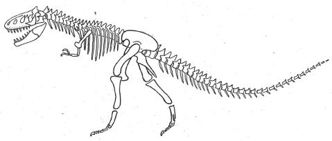 Tarsitano_1983_theropod_posture