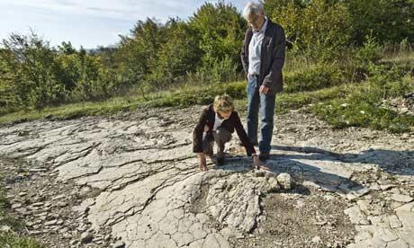 Plagne sauropod track