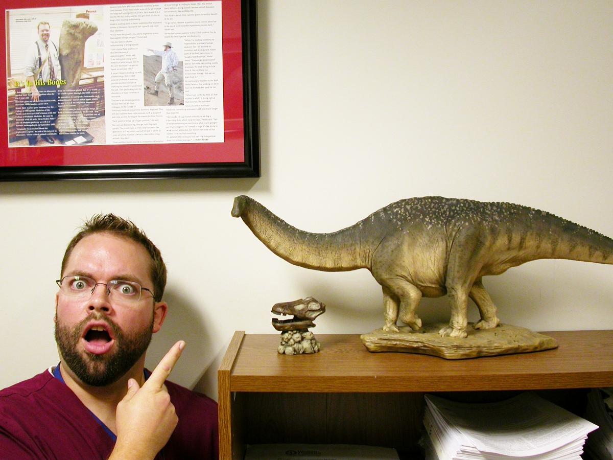 Sexual orientation definition apatosaurus