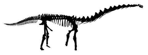Rapetosaurus skeleton silhouette