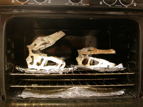 Baking theropods