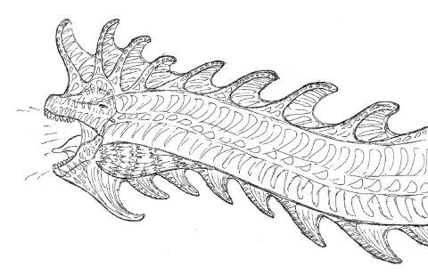 Engh-ed out brachiosaur