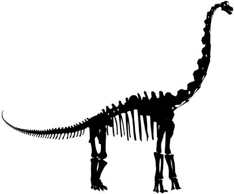 FMNH Brachiosaurus mount lateral - silhouette