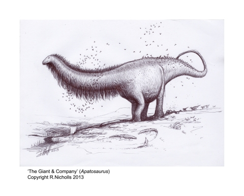 Apatosaurus1B