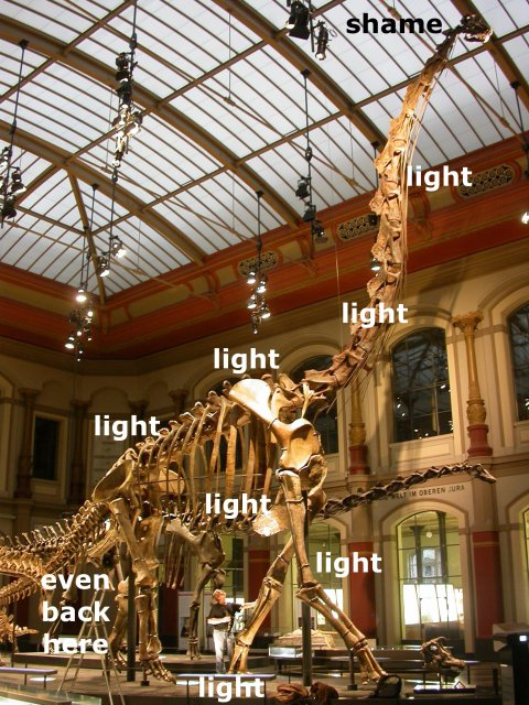 Giraffatitan skeleton hmmm