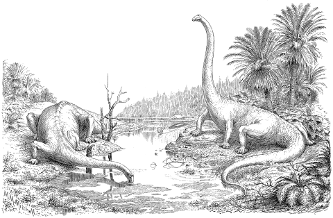 The form and attitudes of Diplodocus. Hay (1910: plate 1)