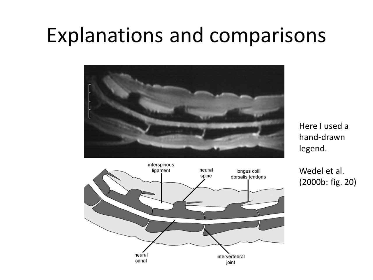 Illustration talk slide 47