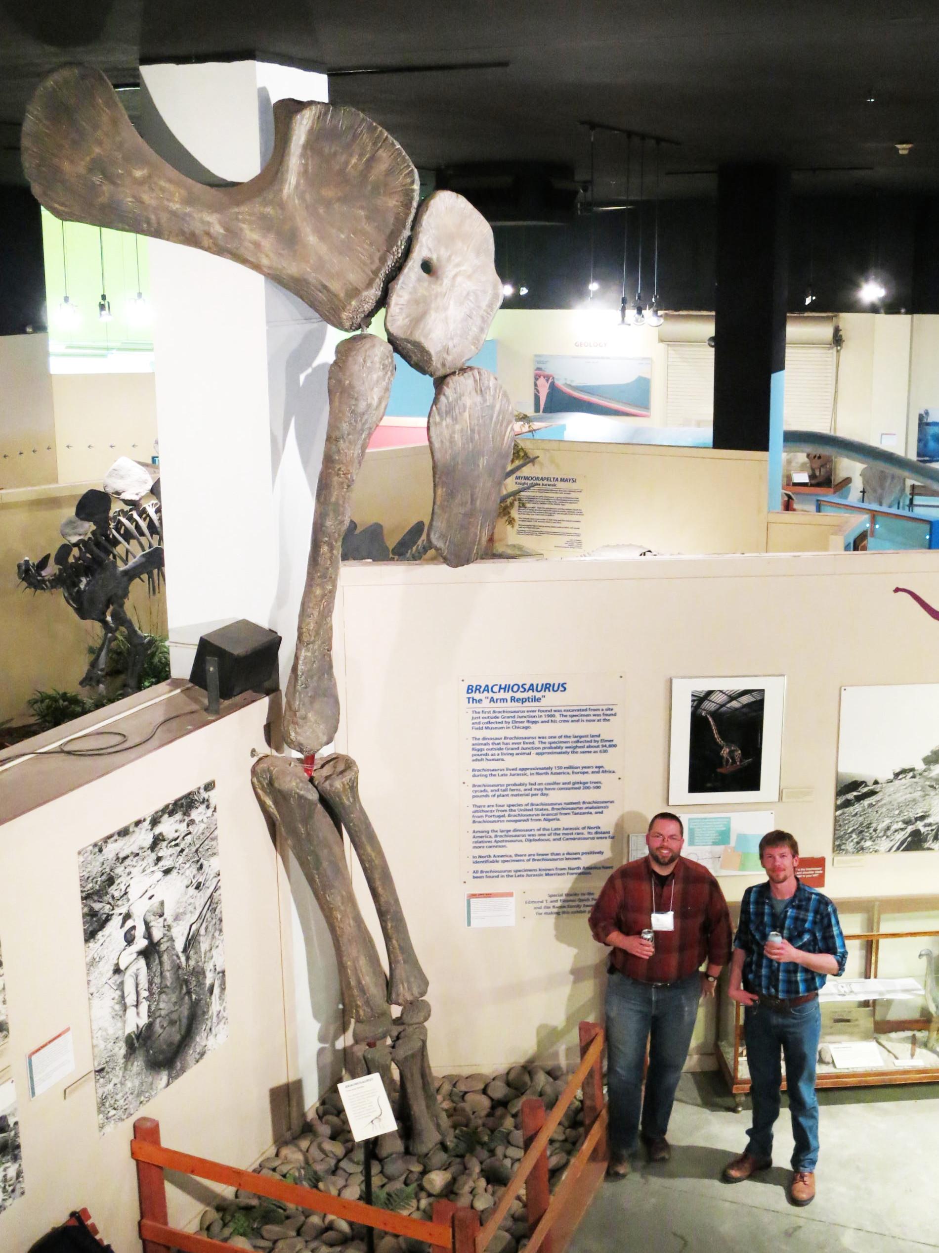 Cary and Matt with Brachiosaurus forelimb
