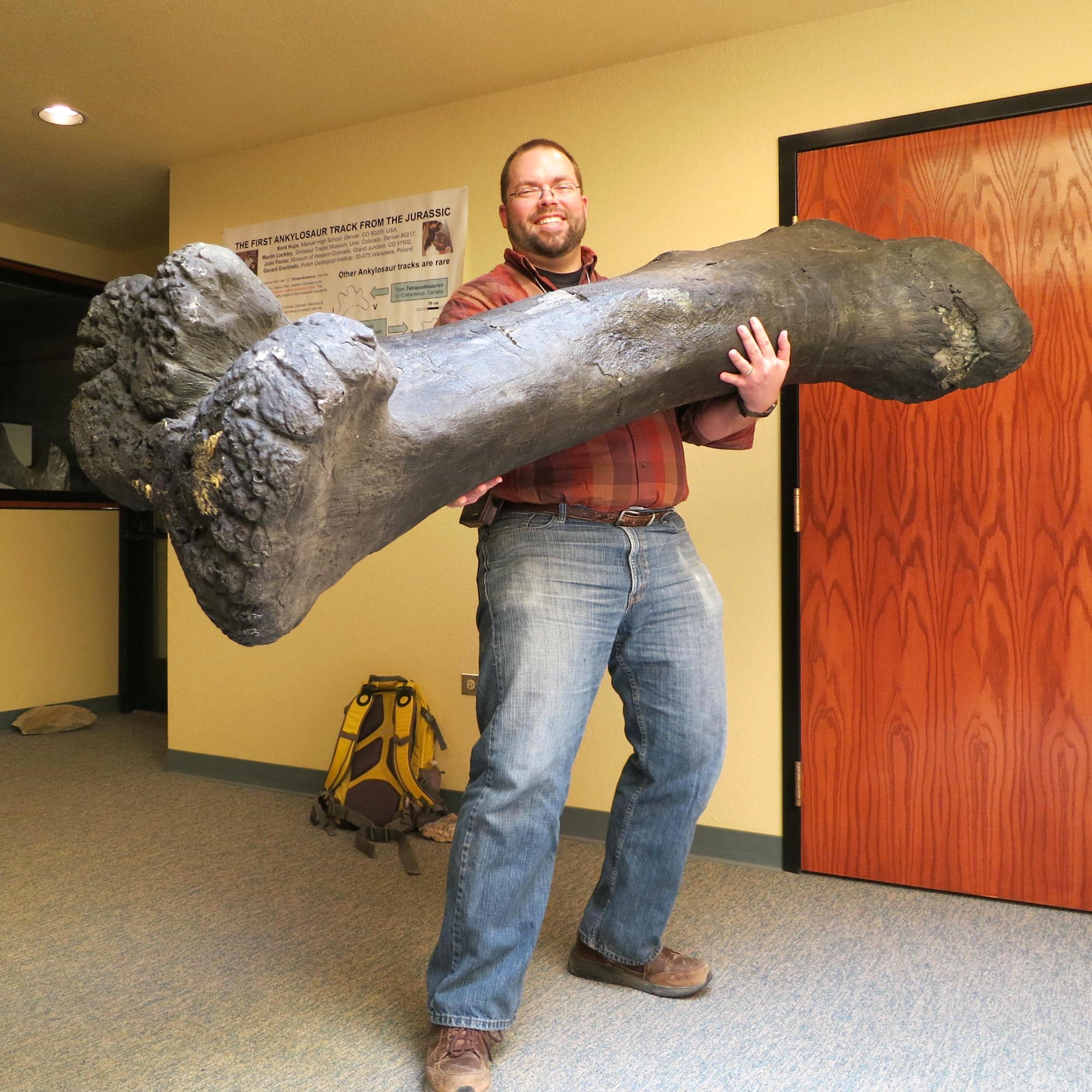 Matt with MWC Apatosaurus femur