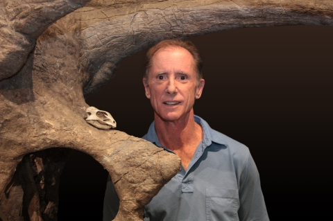 One of the world's smallest ceratopsians meets one of the largest: the reconstructed skull of Aquilops with Rich Cifelli and Pentaceratops for scale.