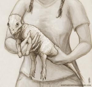 Handling Aquilops by Brian Engh
