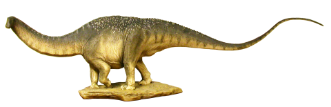 apatosaurus-maquette-whole-lateral cropped - angle 2