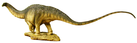 apatosaurus-maquette-whole-lateral cropped