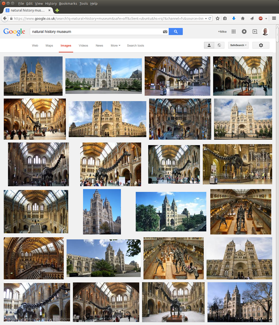 google-search-for-nhm