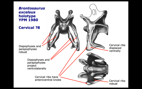 Screen Shot 2015-09-12 at 11.22.26