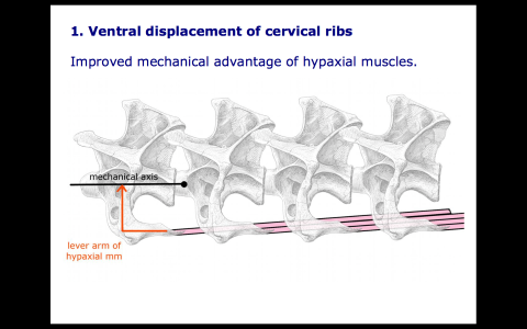 Screen Shot 2015-09-12 at 11.22.57